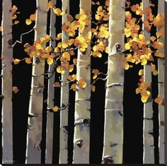 Aspen Grove Stretched Canvas Print by Michael O'Toole at AllPosters.com