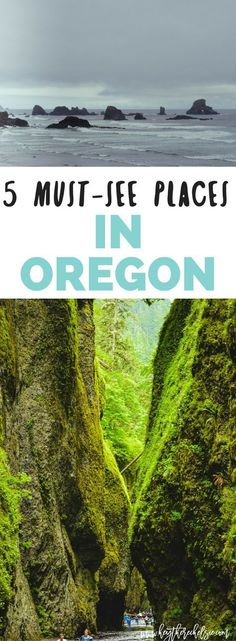 5 Must-See Places in Oregon: A complete guide to 5 things to do in Oregon, including the hidden Oneonta Gorge in the Columbia River Gorge - sharing tips and tricks to exploring the gorge // Hey There, Chelsie