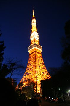 night-time at Tokyo tower