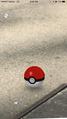 Pokemon Go could crash and burn this way     - CNET  Right after I capture a Pokemon the screen gets stuck with the white Poke ball icon in the upper left hand corner spinning. I have to keep restarting and losing my progress.                                               Roger Cheng/CNET                                          I first encounter the problem after spotting and catching a Bulbasaur a block away from my office. Instead of a screen confirming the digital monster is mine I get a…