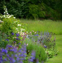 Cottage plants - Garden Designer Justin Spink Cottage Garden beneath the Whitehorse