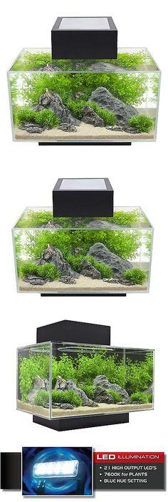 Aquariums and Tanks 20755: Fluval Edge 6-Gallon Aquarium With 21-Led Light, Black BUY IT NOW ONLY: $164.03