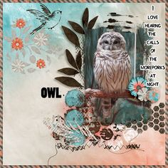 Time For Her To Fly Fusion Bundle + FWP - Created by Jill http://www.pickleberrypop.com/shop/product.php?productid=35637