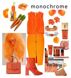 """""""Orange"""" by christined1960 ❤ liked on Polyvore featuring A.L.C., Boutique Moschino, Luckies, Sur La Table, Kenneth Jay Lane, Yves Saint Laurent, Syna, Boyy, Bling Jewelry and monochrome"""