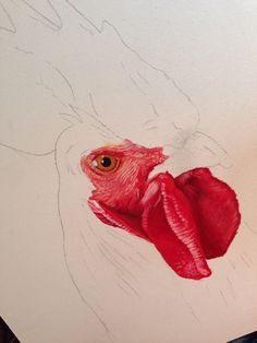 Oil Painting Lessons, Painting Videos, Painting Tips, Watercolour Tutorials, Watercolor Techniques, Painting Techniques, Rooster Painting, Rooster Art, Chicken Painting