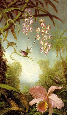 Olímpia Reis Resque: Viajantes: Ramos de orquídeas e beija-flores.