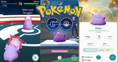 Pokémon GO: Don't Use More Than One Ditto In A Raid With raids and brand new gyms around, it is no wonder trainers are trying new things however, there is one thing you shouldn't try and that's using more than one Ditto in a raid.   #anime #Anime Movies #Anime Updates #apps #ditto #Games #japan #Latest Anime List #manga #news #Niantic #Pokemon #Pokemon Go #Pokemon go Ditto #pokemon go raids #Pokemon, Pokemon Go, News, Updates #Updates