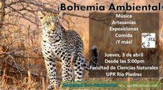 Bohemia Ambiental @ Universidad de Puerto Rico, Río Piedras #sondeaquipr #bohemiaambiental #upr #riopiedras #sociedadecoambiental