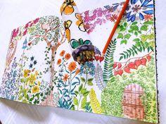 Jardim Secreto: colorindo muito.