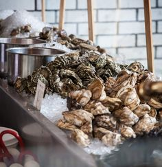 Eat oysters. Become happier and better-looking. - The 21 Best Oyster Bars in The Country