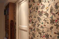 Birds, Papier peint Osborne & Little dans un couloir. Aménager coin bibliothèque. Ronan Cooreman Architecte d'intérieur Lille,