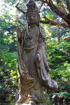 Beautiful Places To See In Japan - Koyasan Buddhist cemetery.
