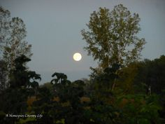 Lunar Eclipse ||| A Homespun Country Life #lunareclipse2015
