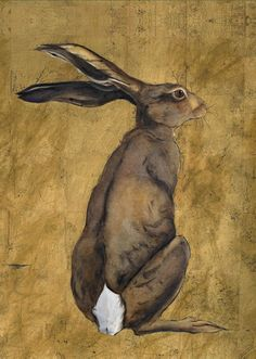 RABBIT from Notebooks - Animal Illustrations by Jackie Morris Bunny Painting, Love Painting, Hare Pictures, Morris, Rabbit Art, Woodland Creatures, All Art, Painting Inspiration, Moose Art