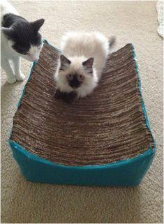 Top 10 DIY Cat Scratching Posts and Pads
