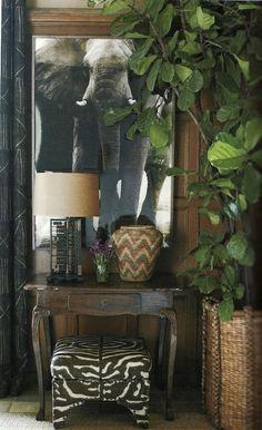 Go on safari with woven textures, lush greenery, animal print, and an animal print.
