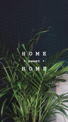 plant story ideen ich Plants just Wanne be friends Ideas De Instagram Story, Instagram Hacks, Creative Instagram Stories, Instagram And Snapchat, Friends Instagram, Photos, Wallpaper Plants, Friends Wallpaper, Ig Story