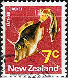 New Zealand.  LEATHER JACKET.  Scott   446 A173, Issued 1970 Nov 4, Wrmk 253, Perf. 13 1/2 x 13, 7c. /ldb.