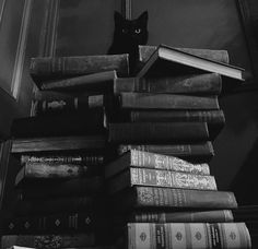 Gothic and Amazing Aesthetic Themes, Book Aesthetic, Aesthetic Pictures, Witch Aesthetic, Black Cat Aesthetic, The Lost Hero, Black And White Books, Bellatrix Lestrange, Cute Icons