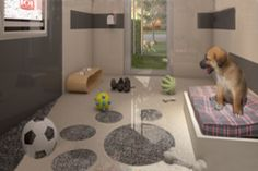 dog boarding facilities, air conditioned rooms and suits with private outdoor area...YES!!!!!!!