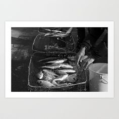 Fisherman hands Art Print by Francesca Vincis - $14.56