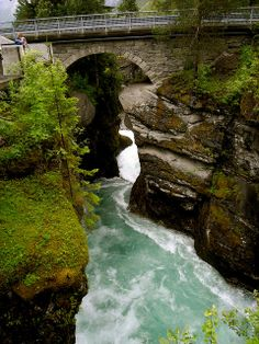 Troll Home Norway  - I think bridge trolls smell better than forest trolls. Running water and all.