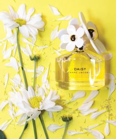 Why Women Keep Going Back to Marc Jacobs Daisy - The Kit Sephora, Marc Jacobs Perfume, Valentino, Uv Gel Nails, Diy Nails, Eos Lip Balm, Marc Jacobs Daisy, Victoria's Secret, Victoria Secret Perfume