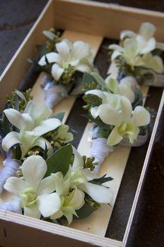 corsages by v&j plant shop