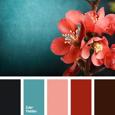 """Every year Pantone announces a """"Color of the Year"""" based on current and upcoming trends. Their choice influences design in all areas, including wedding design. For the Pantone color experts have chosen Living Coral. Color Schemes Colour Palettes, Red Colour Palette, Room Color Schemes, Red Color, Christmas Colour Palette, Office Color Schemes, Vintage Colour Palette, Blue Palette, Color Trends"""