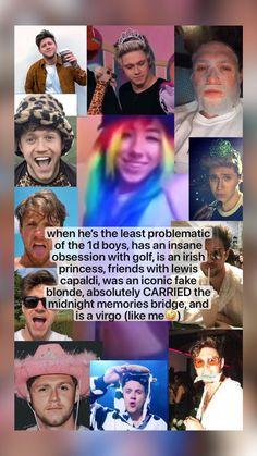 Midnight Memories, Niall Horan, Virgo, Carry On, Lady, Boys, Movie Posters, Baby Boys, Virgos