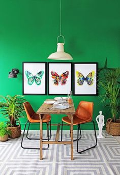 Vivid green dining room with BUTTERFLY prints from Rockett St George