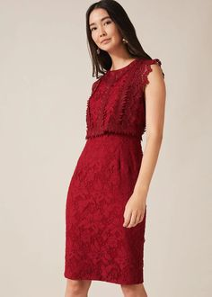 Our Alex dress is the perfect blend of bold and delicate: confident red stylishly contrasts with intricate lace detailing on a fitted shape, making this a standout occasion style for your next event. Phase Eight Lovely Dresses, Formal Dresses, Red Lace, Special Occasion Dresses, Lace Detail, Fitness Fashion, Confident, Autumn Wedding, Delicate