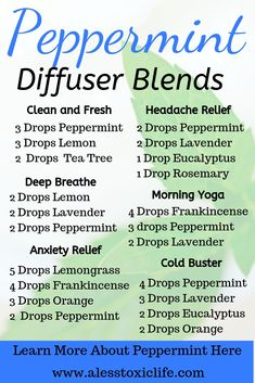 Peppermint Essential Oil Diffuser Blends New to Essential Oils Searching for Simple Essential Oil Combinations for Diffuser Check out these Easy Essential Oil Blends and. Essential Oil Spray, Essential Oils Guide, Essential Oil Diffuser Blends, Essential Oils For Headaches, Breathe Essential Oil, Essential Oil Blends For Colds, Essential Oils Energy, Essential Oil Recipies, Relaxing Essential Oil Blends