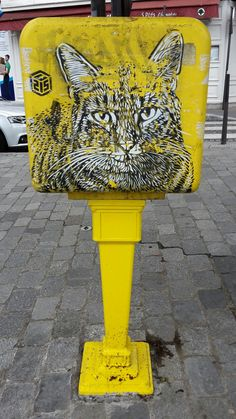 Le chat postier/ the post cat made by C215 in Rue Lefevbre, 15th district of Paris
