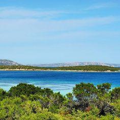 by http://ift.tt/1OJSkeg - Sardegna turismo by italylandscape.com #traveloffers #holiday | Colori di Sardegna... #senzafiltro #nofilter #concaverde #sardinia #colors #ilovesardinia #ilovenature #sealovers #emeraldsea #naturelovers #nature_seekers #lanuovasardegna #focusardegna #sardegnaalmare #volgosardegna #sardegnadaimillevolti #sardiniaexp #sardegnageographic #landscape_photography #amazing #all_shots #instasardegna #photooftheday #sun #sole #sardegna_super_pics super Foto presente anche…
