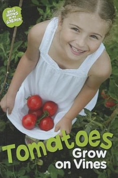 Tomatoes grow on the vine by Anne Rooney (E 635 ROO) - for garden display?