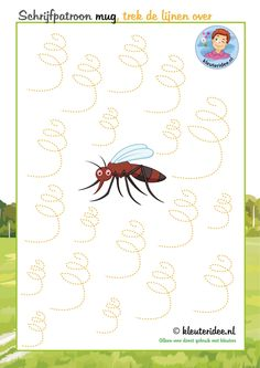 Schrijfpatroon mug, Trek de stippellijn over, thema insecten voor kleuters, kleuteridee, free printable.