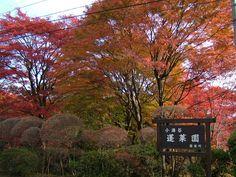 Horai-en, Kanagawa