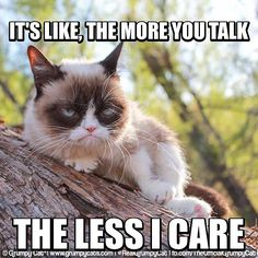 The more you talk… The less I care. #GrumpyCat