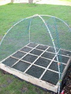 Framed garden netting for square foot garden / raised garden beds. Raised Garden Beds, Raised Beds, Deer Resistant Garden, Garden Netting, Bird Netting, Garden Projects, Pvc Projects, Pvc Pipe Garden Ideas, Victory Garden