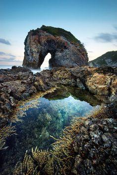 Sea Horse: monumental Rocky beach landscape, Camel Rock, Berguami, Australia