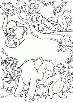 Dibujos para Colorear Animales de la Selva