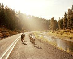 pretty bike ride