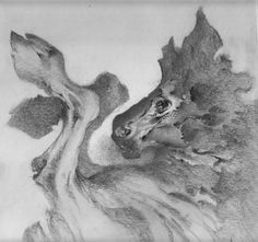 Image result for allen williams shadows drawing