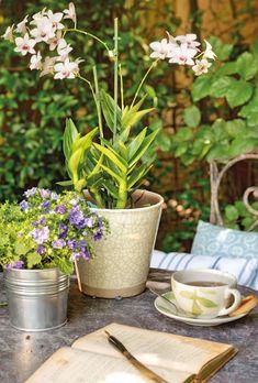 Un jardín de día y de noche · ElMueble.com · Casa sana