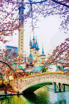 Lotte World, Seoul South Korea Cherry Blossoms  April