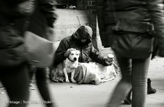 The unconditional love between dogs and their owners l Photo Tony Cole l #homeless #dogs #love
