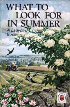 WHAT TO LOOK FOR IN SUMMER Vintage Ladybird Book Nature