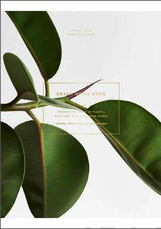 Green Home Book – Suomalainen.com Nordic Design, Scandinavian Design, Modern Design, Kinfolk Table, Shops, Guide Book, Wonderful Places, Houseplants, Beautiful Homes