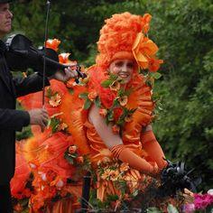 Oranje, bloemen, corso, water,